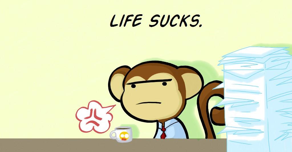 code monkey2