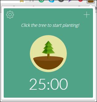 forest start timer